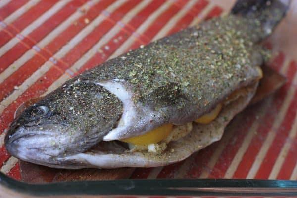 Na dno zapekacej misky (sklenenej misky alebo plechu) si dáme dve varešky (resp. viac, podľa toho koľko rýb idete piecť) aby sa nám ryba neprichytila a dobre sa nám dala otočiť. Varešky potrieme olivovým olejom a položíme naň ryby. Vrch ešte pokvapkáme oliváčom a dáme do rúry. Pečieme 10 min, potom rybu otočíme, pokvapkáme olejom, posypeme korením, znížime na 200 stupňov a grilujeme do chrumkava ešte 15-20 min. Ak nemáte funkciu gril dajte režim hore dole ale bez ventilátora. Ryba by bola suchá.